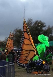 butterflies and cricket