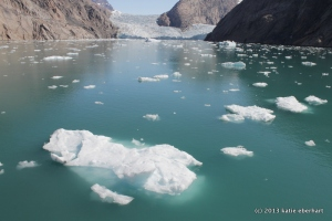 Greenland fjord. July 31, 2011.