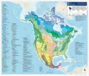 North American Ecoregions
