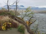 Matanuska River Viewpoint