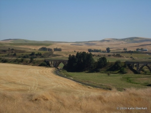 The Palouse near Rosalia, Washington